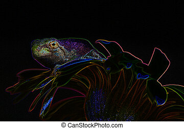 Neon Frog and flower