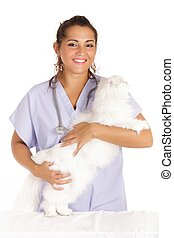 veterinary hugging white angora cat - young veterinary woman...