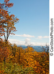 Fall Foliage Frame - Colorful foliage frames the autumn...