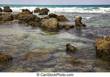Mediterranean sea - Stony coast of Mediterranean sea in hot...