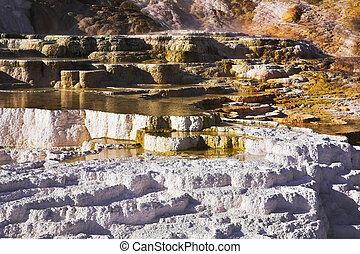 Hot springs in Yellowstone national park - Multi-colour...