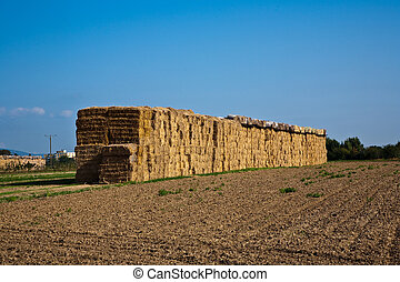 bale of straw with blue sky - bale of straw in autumn in...