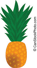 Pine apple - We see pineapple cartoon vector illustration