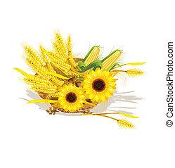 säsongbetonad, design, vete, solros, flätverk,...
