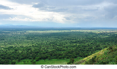 around Bwindi Impenetrable Forest in Africa - aerial view...