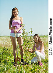 woman with teen daughter  resetting  tree