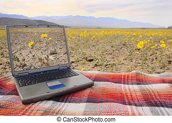 computer on a blanket - computer with a picture of the local...
