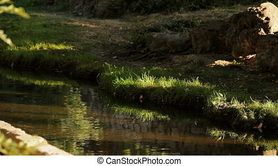 Flow of clean water