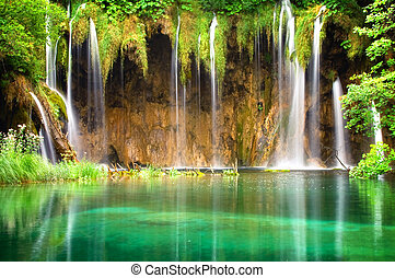 Waterfall - Beautiful waterfall in the forrest