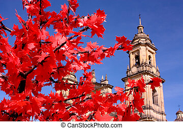 Cathedral of Bogota, Colombia - Cathedral of Bogota....
