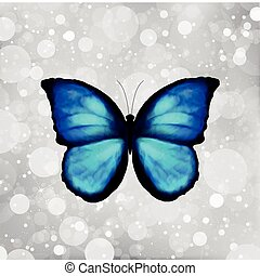 Butterfly In Blue Tones Vector - Butterfly in blue and black...