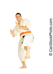 martial art person isolated - young man doing martial art...