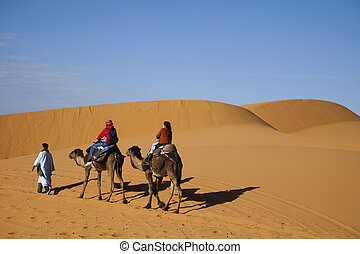 Desert dunes in Morocco - Sand Desert with Dunes in Marocco,...