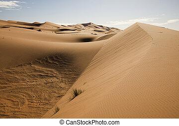 Desert sand  - Sand Desert with Dunes in Marocco, merzouga