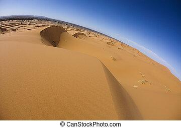 Desert landscape, merzouga, marocco - Sand Desert with Dunes...