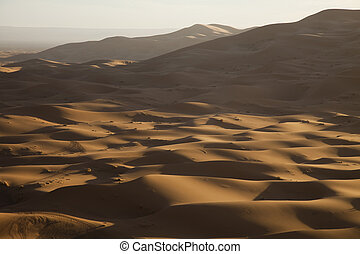 Sand background - Sand Desert with Dunes in Marocco,...