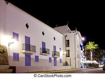 Ibiza white houses in night with palm trees
