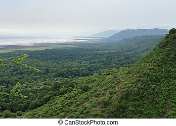Lake Manyara National Park in Africa - aerial view over Lake...