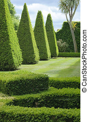 English boxwood garden design, Norfolk, England.