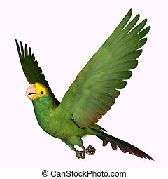 Double Yellow Amazon Parrot - This beautiful green and...