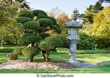 Stone Lantern and Pruned Bonsai Tree at Japanese Garden in...