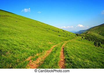estrada, verde, colinas, longo, sujeira