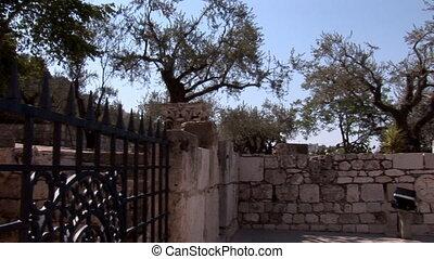 Gethsemane 5