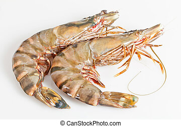 Gambas - Fresh raw big prawn on wooden background