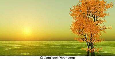 otoño, ocaso