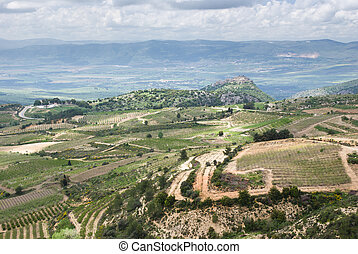 view od the golan heights and the Galilee - northern israel