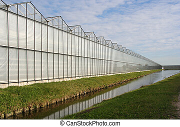 Greenhouse in Holland