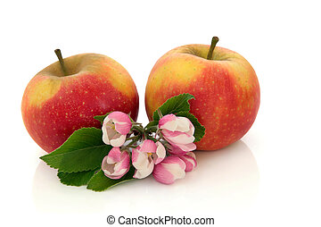 Apple Fruit with Flower Blossom