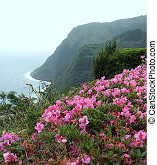 Azores coastal scenery - idyllic coastal landscape at Sao...