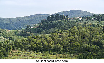 Chianti in Tuscany - scenery around Gaiole near Castle of...