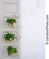 Vintage door with flowerpots in southern Italy