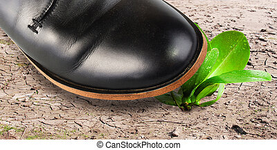Environmental destruction - men's foot kills the last plant...