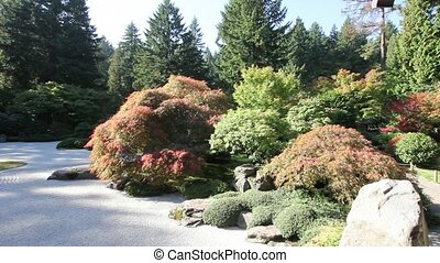 Japanese Flat Zen Sand Garden with Maple Trees and Evergreen...