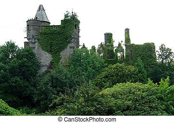 Arcadian ruin near Drymen - idyllic overgrown ruin...