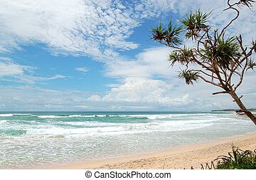 Beach and turquoise water of Indian Ocean, Bentota, Sri...