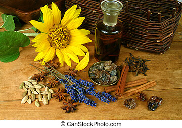 Sunflower and spices - Fresh sunflower and spices Rustic...