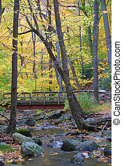 wood bridge with Autumn forest over creek