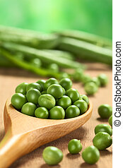 Fresh raw green pea (lat. Pisum Sativum) seeds on wooden...