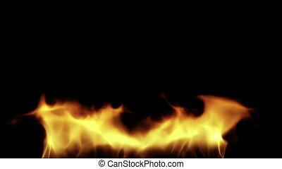 Burning fire - Fire slowly burning. Fire burning on black...