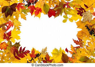 otoño, hojas, diferente