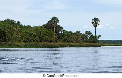Victoria Nile scenery in Uganda - waterside scenery showing...