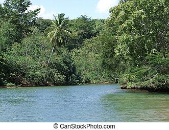 Dominican Republic waterside scenery