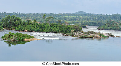 River Nile scenery near Jinja in Africa - waterside scenery...