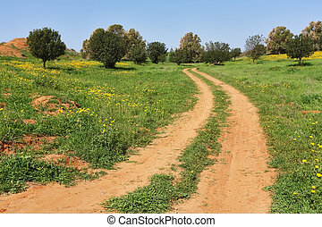 The rural dirt road passes fields