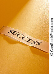 Success Message