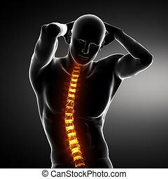 Male Body Backbone Scan